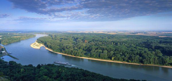 Donau-Auen2_Kovacs