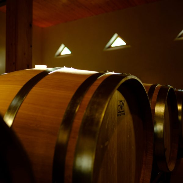 Eichenwald Weine_Das Weingut_Innenaufnahme_2
