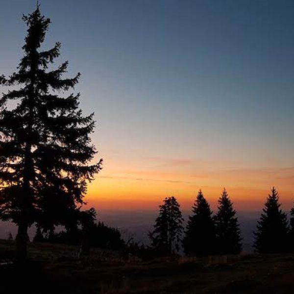 GoodDriveCrew_Sunrise 3