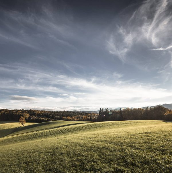 HOCHSTRASS_H6B3928_landschaft_keyvisual